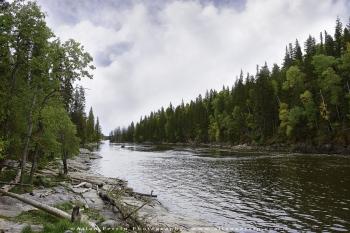 Grass-River